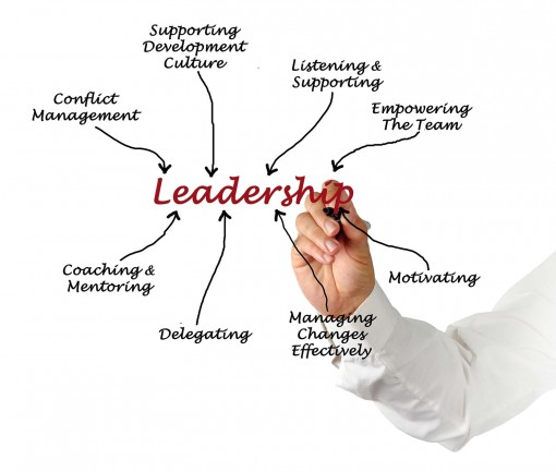 Leadership - Executive Coach